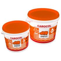 CAROCOL SEAU 15 KG