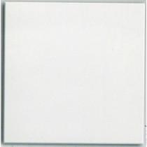 Dalle de plâtre allégé Lisse 60x60